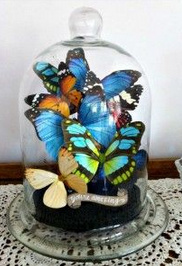 Butterfly cloche wedding centrepiece